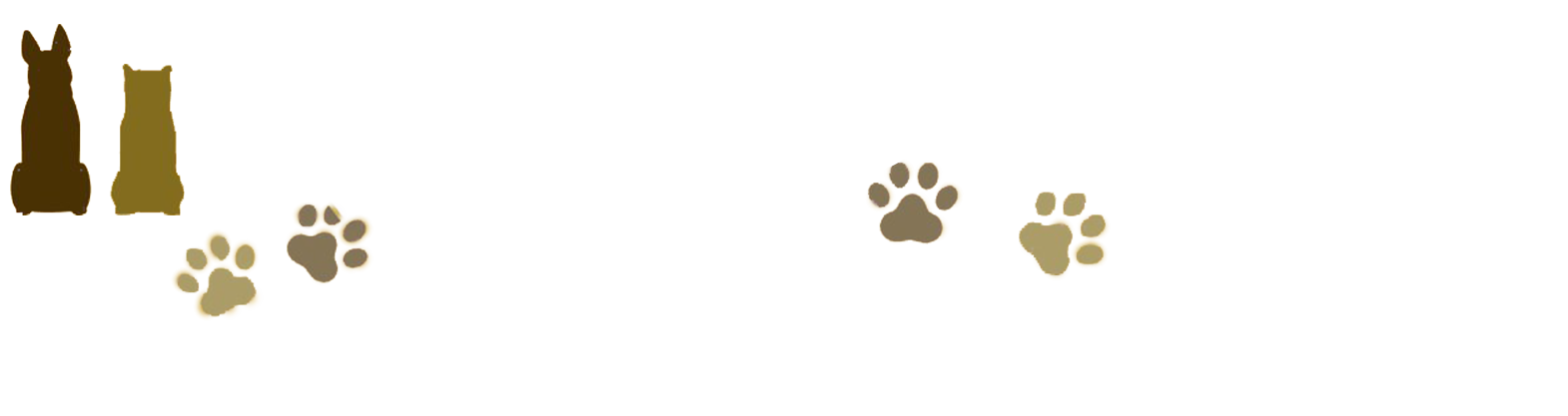 ハチとパルマの物語